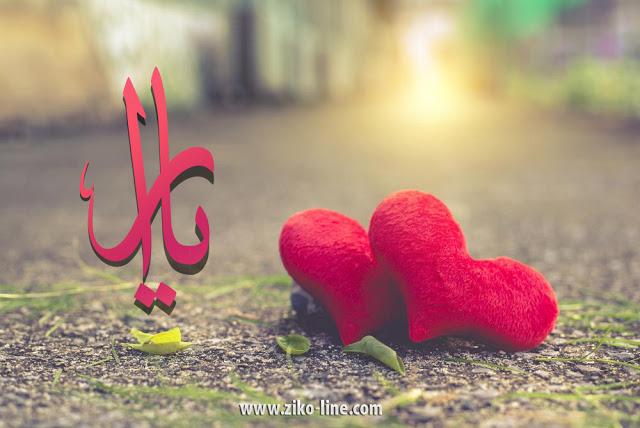 دلع باسم يارا تدليع اسم يارا 2021 القاب دلع لاسم يارا صقور الإبدآع