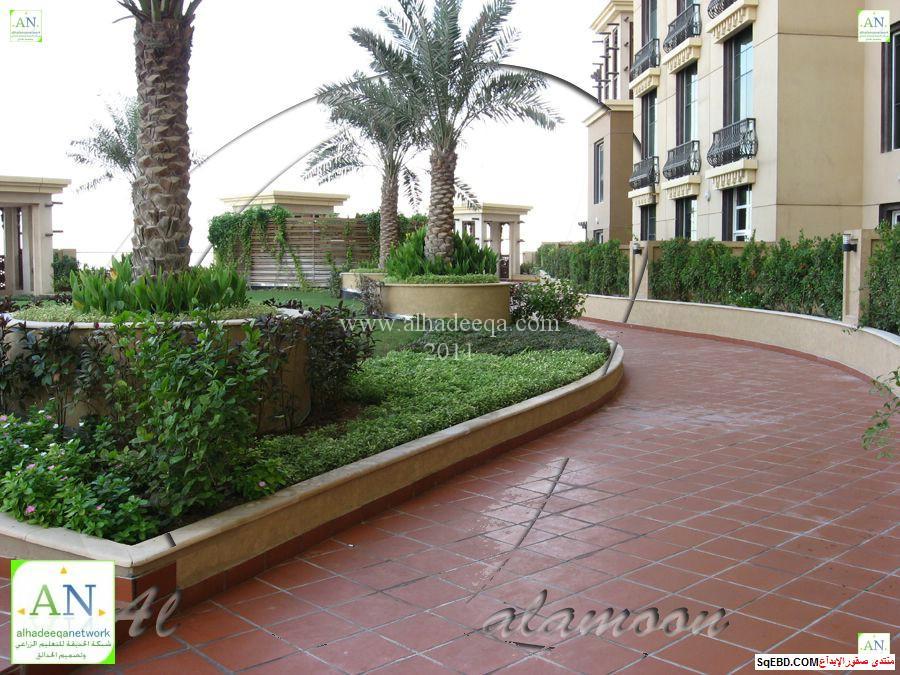 ارضيات حدائق منزلية, احواض زرع خارجيه, ارضيات خارجية, do.php?img=7583