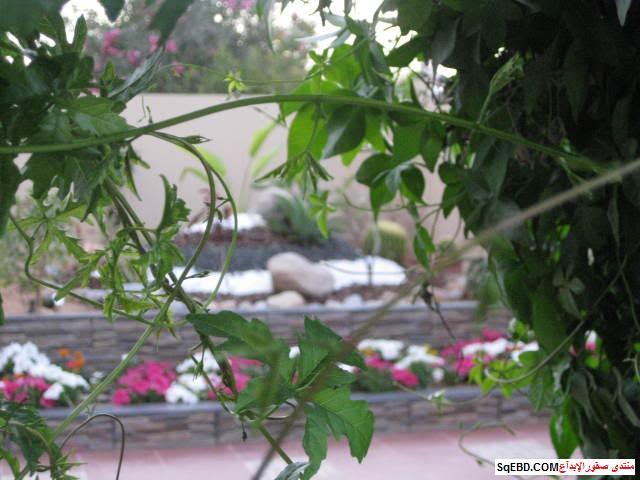 جلسات خارجية للحدائق, احواض زراعه و ديكورات حجرية لحديقة منزلك, do.php?img=7622