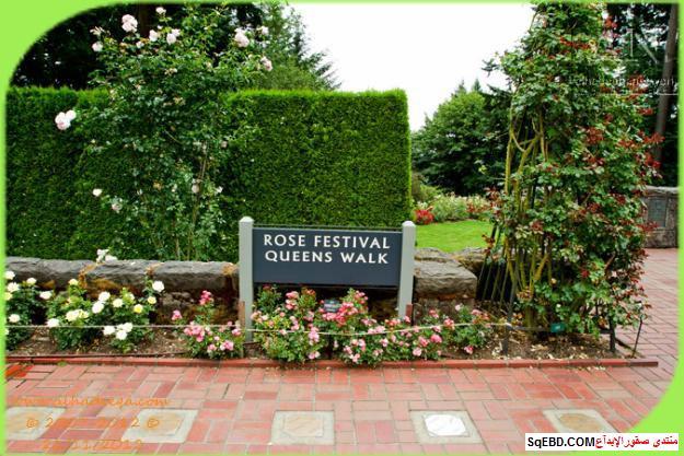 بالصور اجمل ورود الصباح, الحديقة الدولية , حديقة الزهور في بورتلاند do.php?img=7711