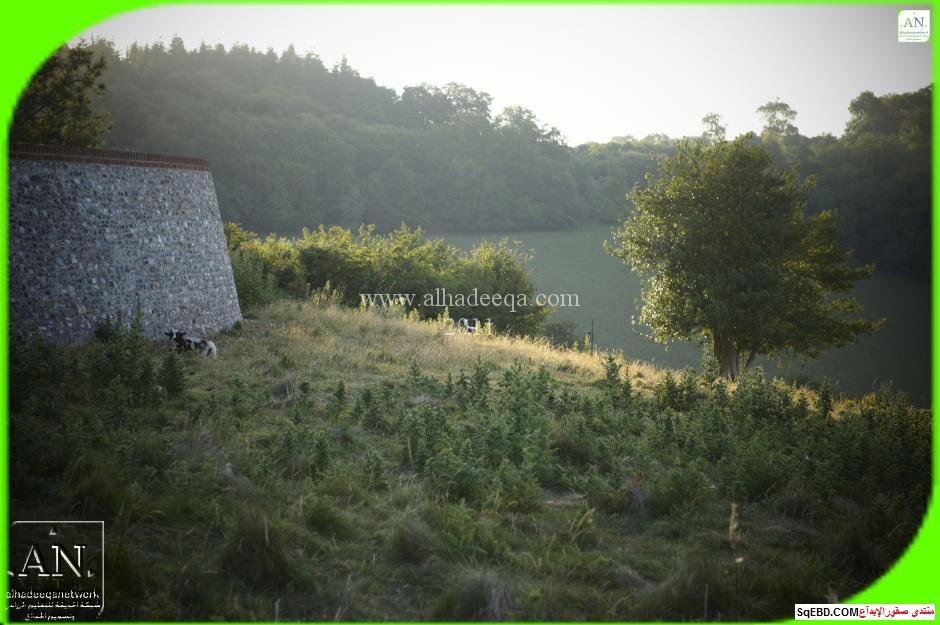 اجمل المزارع والحدائق, المزرعة الجميلة والحدائق الطبيعية, ديكورات مزارع, do.php?img=7739