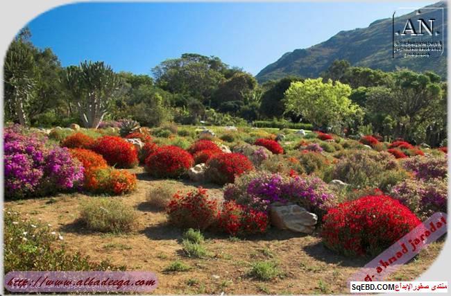 اجمل الحدائق في العالم, عالم الطبيعة والجمال, اهم الحدائق الطبيعية do.php?img=7747