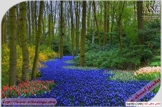 اجمل الحدائق في العالم, عالم الطبيعة والجمال, اهم الحدائق الطبيعية do.php?img=7753