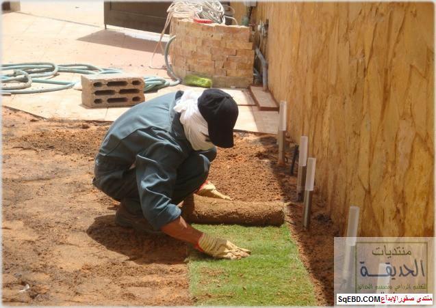حدائق منزلية بسيطة , احواض زراعية منزلية , تبليط الحوش do.php?img=7791