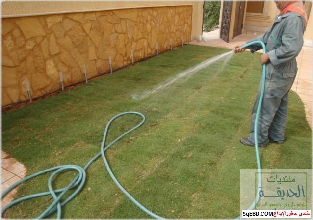 حدائق منزلية بسيطة , احواض زراعية منزلية , تبليط الحوش do.php?img=7794
