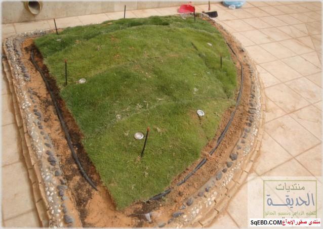 حدائق منزلية بسيطة , احواض زراعية منزلية , تبليط الحوش do.php?img=7796