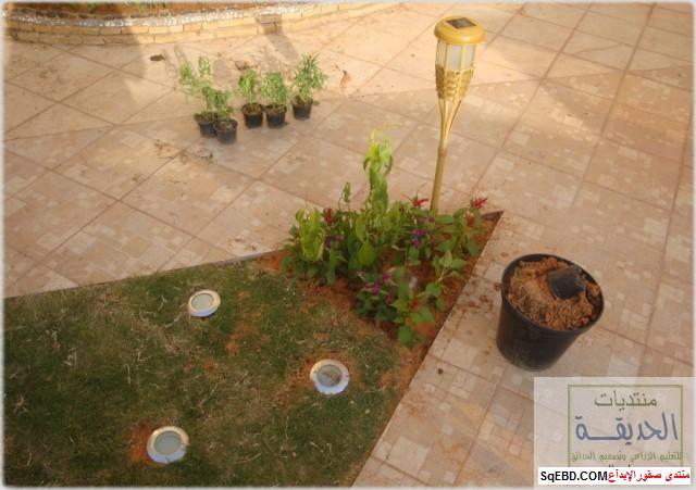 حدائق منزلية بسيطة , احواض زراعية منزلية , تبليط الحوش do.php?img=7805