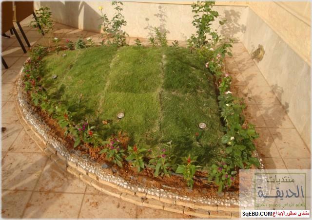 حدائق منزلية بسيطة , احواض زراعية منزلية , تبليط الحوش do.php?img=7809