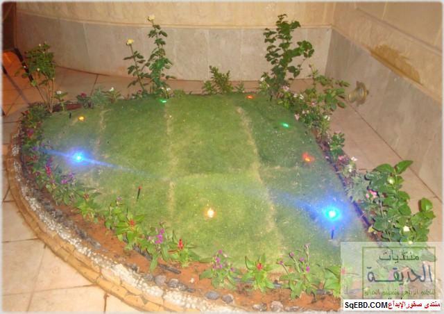 حدائق منزلية بسيطة , احواض زراعية منزلية , تبليط الحوش do.php?img=7811