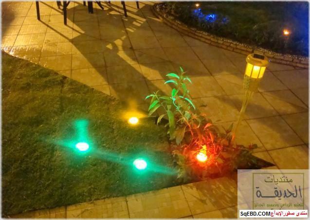 حدائق منزلية بسيطة , احواض زراعية منزلية , تبليط الحوش do.php?img=7814