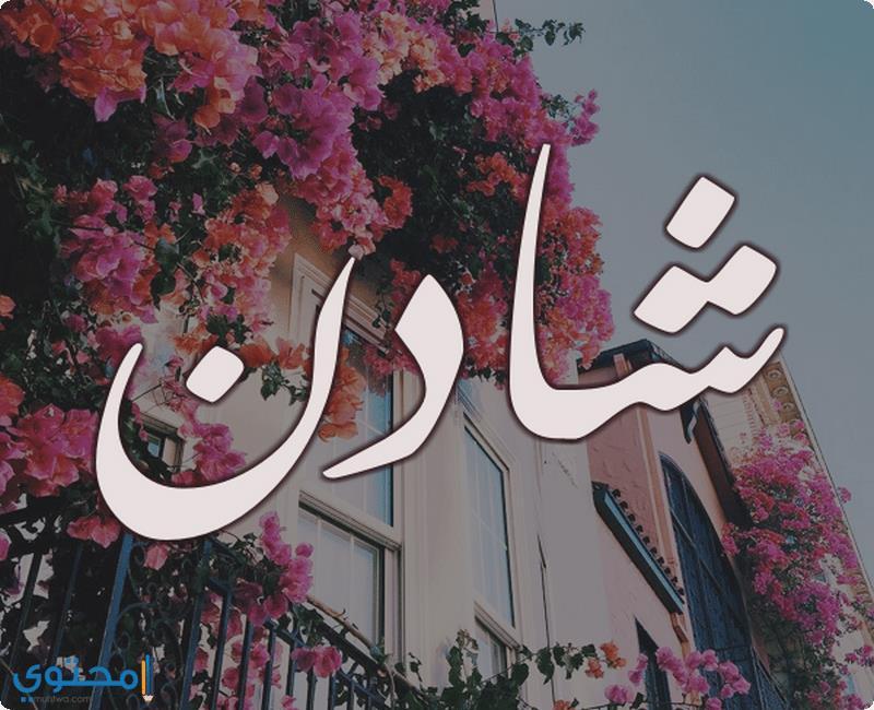 صور اسم شادن متحركه صور باسم شادن مميز احلى خلفيات اسم شادن 2021 صقور الإبدآع