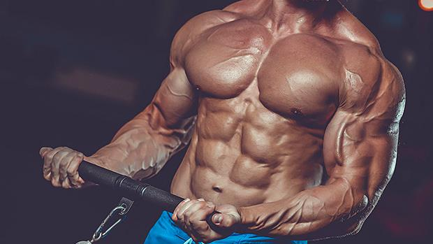 Best supplements for muscle growth bodybuilding forum