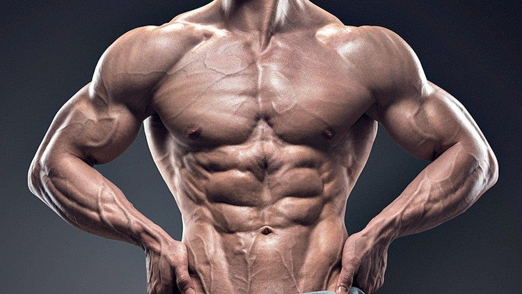 Best supplements for muscle growth 2019